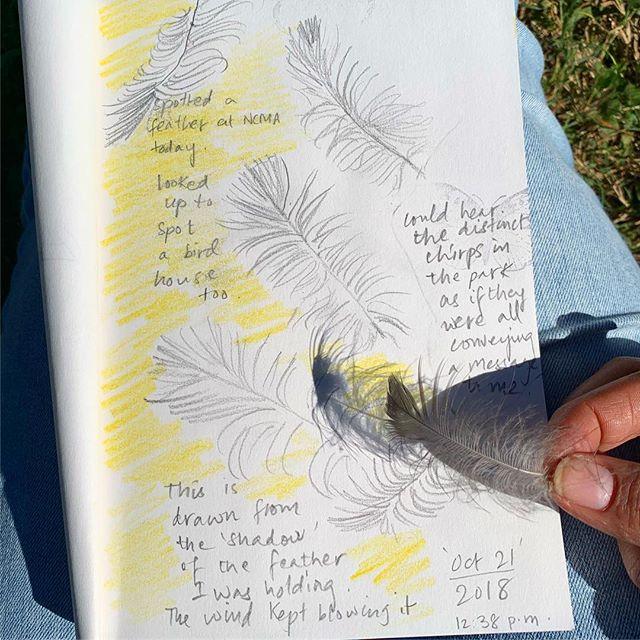 A herb walk + nature journaling @ncartmuseum today...