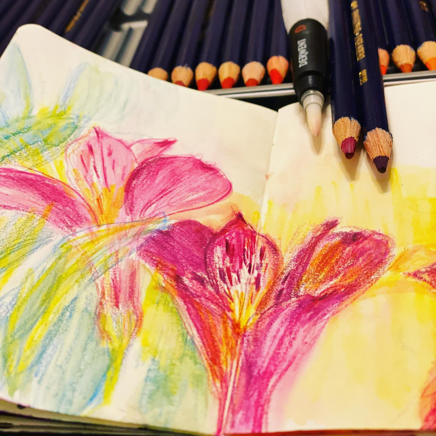 Trying out the new pencils! Love the inky vibrance and the watercolor effect...